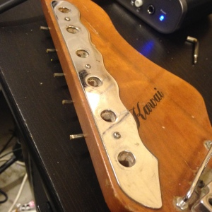 Like the tuner mounting plate on the front of the headstock